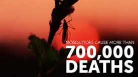 MosquitoDeaths