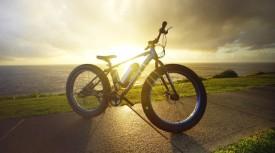 Fat-Bikes-31