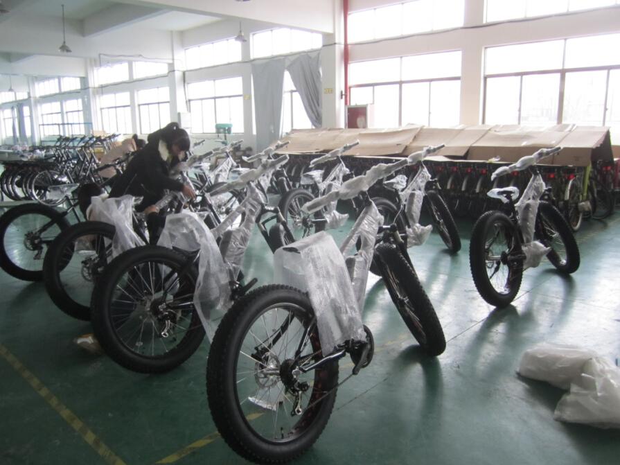 new fatbike (12)