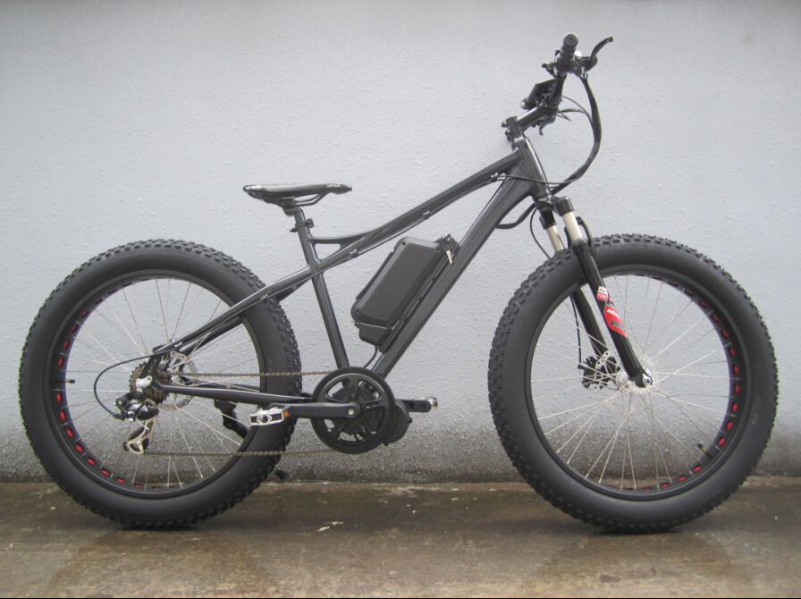 new fatbike(13)